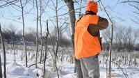 Lumberjack Jeff | SportingDog Adventures