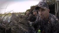 Louisiana Teal Hunt | SportingDog Adventures
