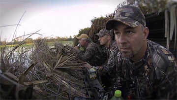 Louisiana Teal Hunt | SportingDog Adventures