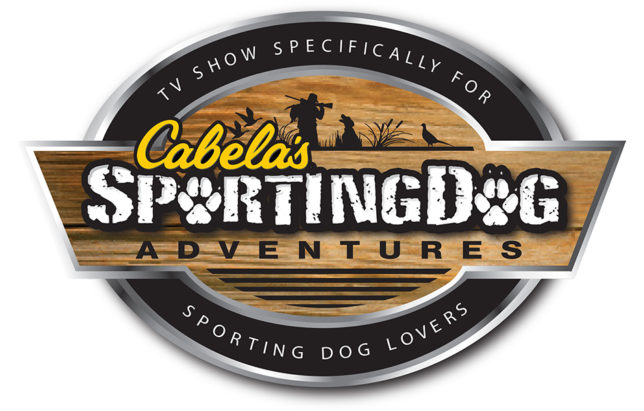 Cabelas SportingDog Adventures | Labrador Retrievers