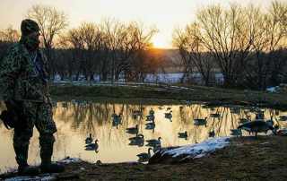 Kansas Waterfowl Hunt | Cabelas SportingDog Adventures
