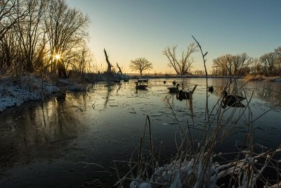 Natural Beauty | SportingDog Adventures