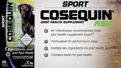 Cosequin Sport ASU | SportingDog Adventures